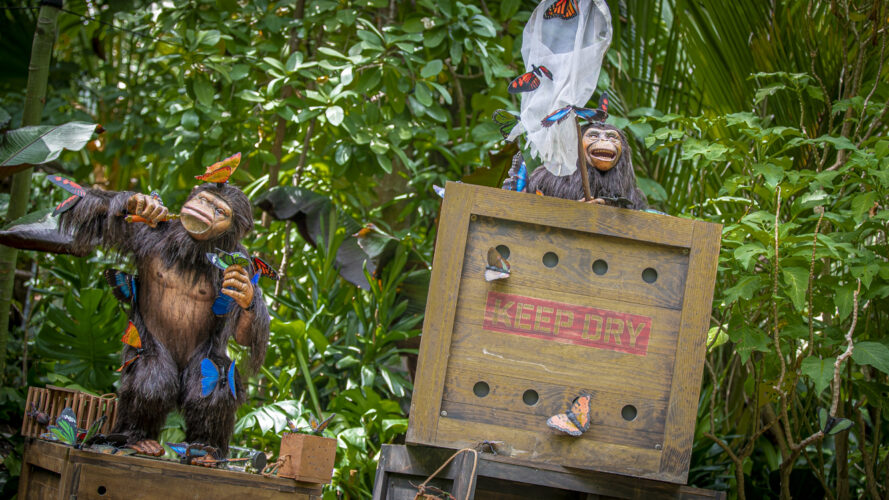 Jungle Cruise Butterfly Chimps