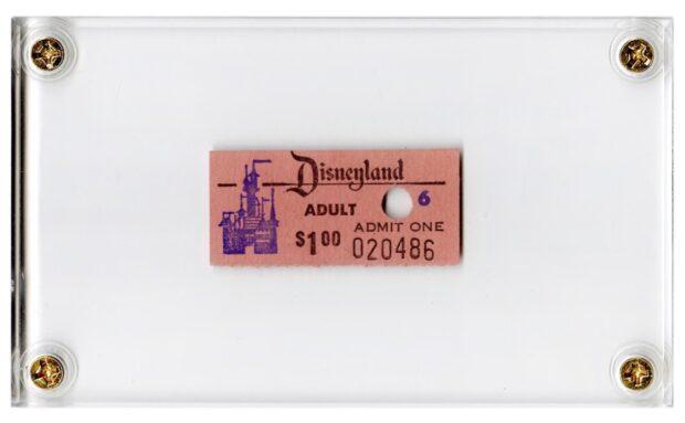 Disney Auction - Disneyland admission ticket