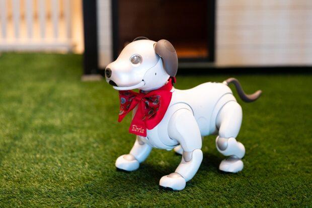 Resort World Las Vegas robotic puppy Elvis