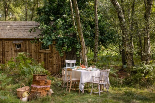 hundred acre wood picnic table